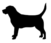 Beagle Silhouette Decal Sticker