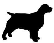 Springer Spaniel Silhouette Decal Sticker