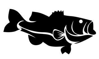 Bass 4 Decal Sticker