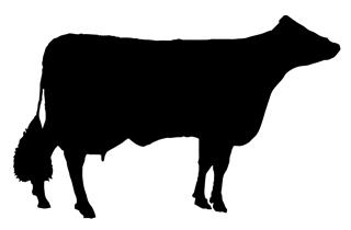 Cow Silhouette v4 Decal Sticker