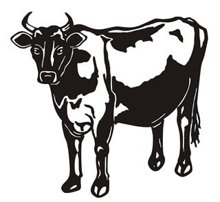Cow v11 Decal Sticker