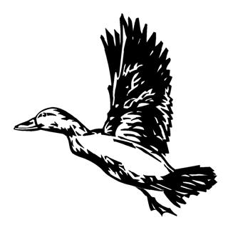 Duck 3 Decal Sticker