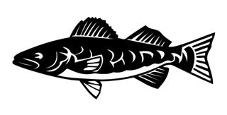 Fish 10 Decal Sticker
