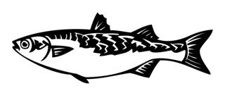 Fish 7 Decal Sticker