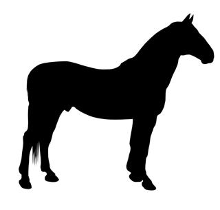Horse Silhouette v16 Decal Sticker